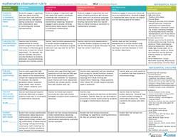 observation frameworks